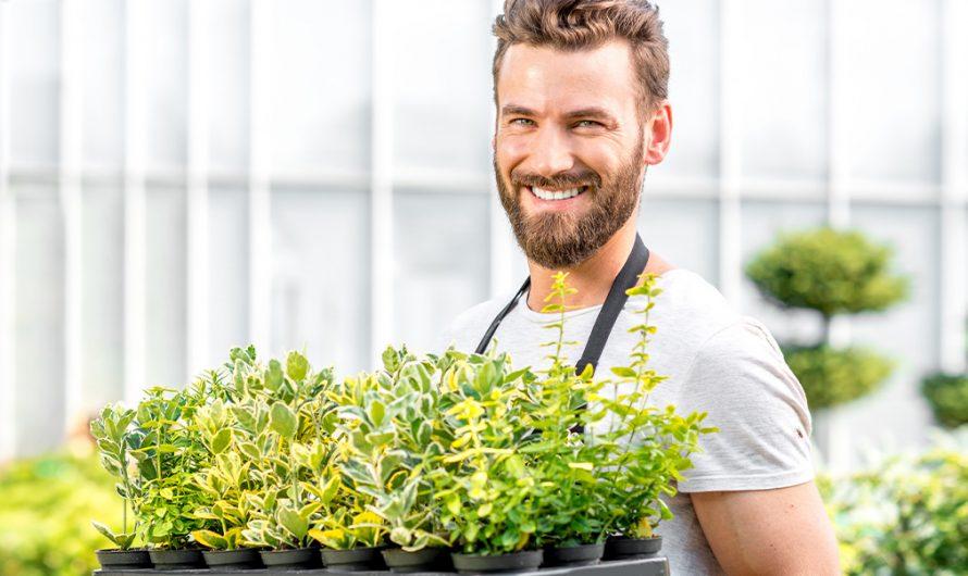 7 свежи идеи за финални щрихи в градината, с които да я превърнеш в шедьовър