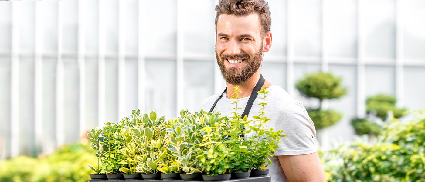 превърни градината в шедьовър