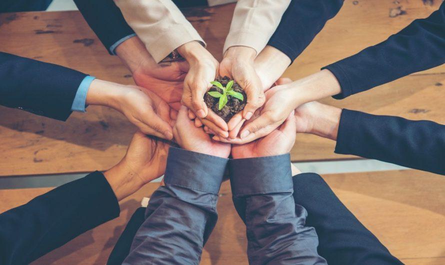 Малките бизнеси и зелените идеи